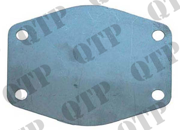 Water Pump Back Plate - Stainless Steel